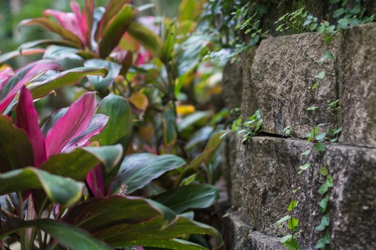 Sunken Gardens-2