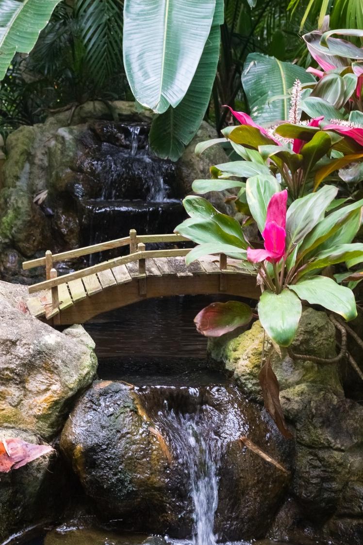 Sunken Gardens-29